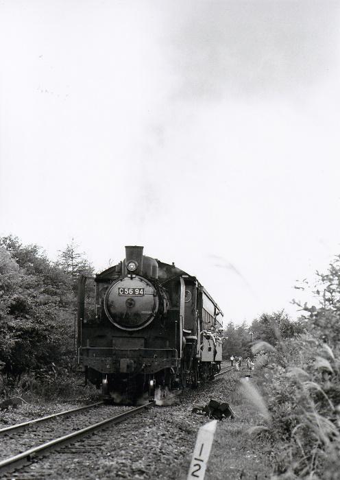 Koumi41_1203